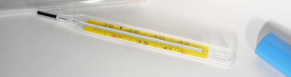 Thermometer Tipps und Vergleich