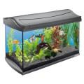 Aquarium Bestseller