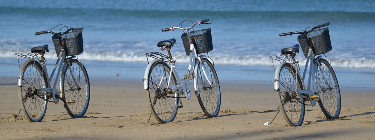 Fahrradkorb Vergleich