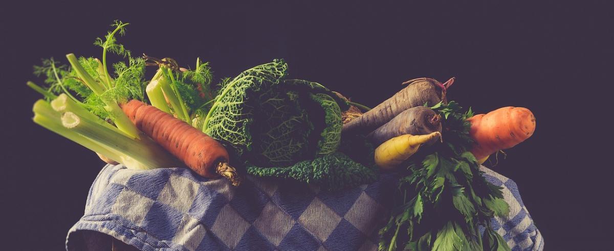Gemüseschneider Vergleich