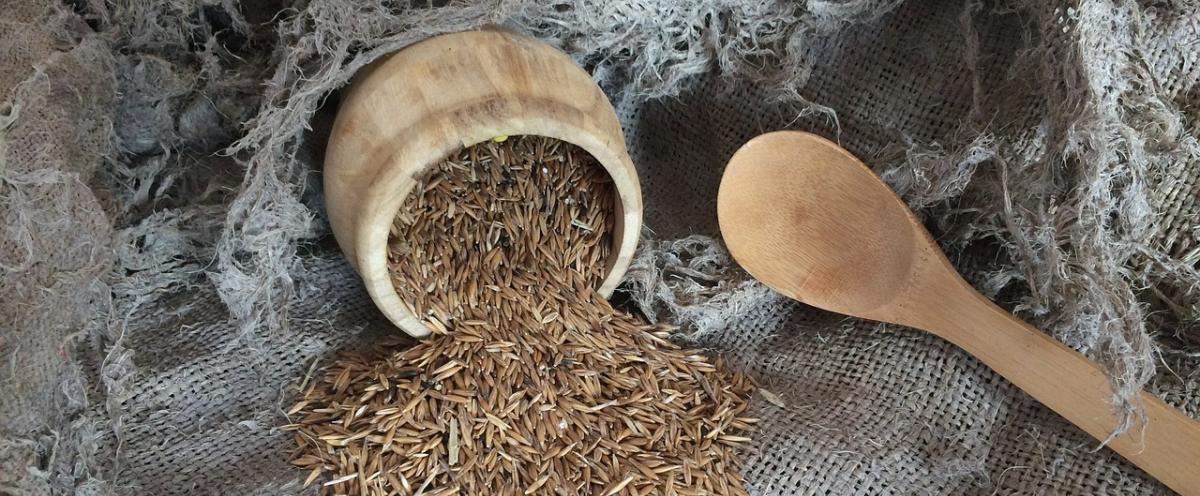 Getreidemühle Vergleich