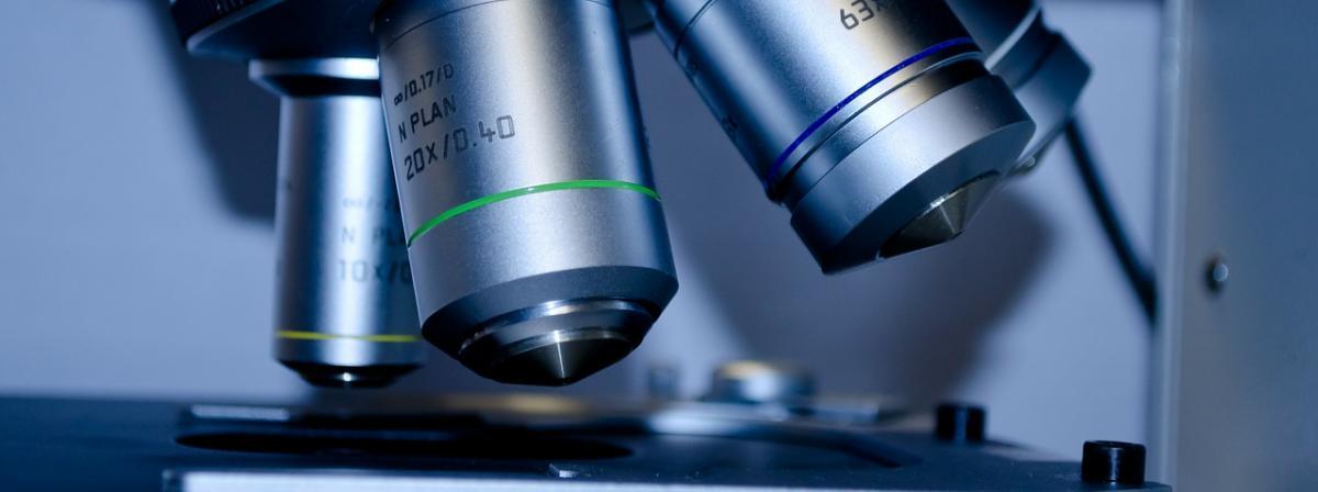 Mikroskope Ratgeber