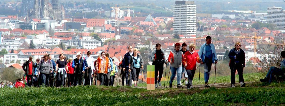 Nordic-Walking-Stöcke Vergleich