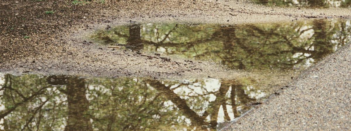 Regenmesser Vergleich