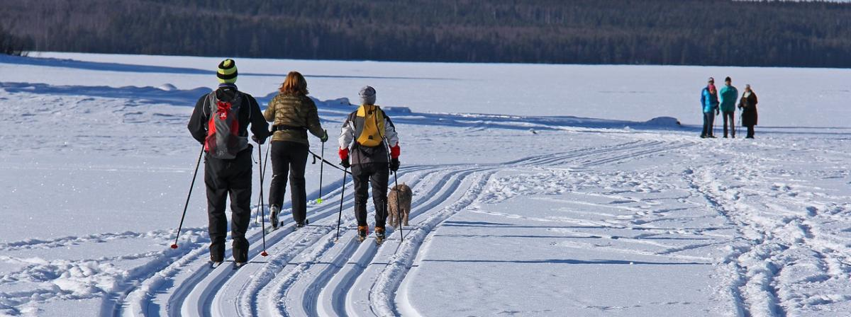 Skihandschuhe Vergleich