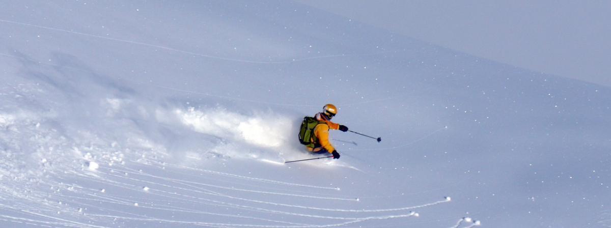 Skistöcke Ratgeber