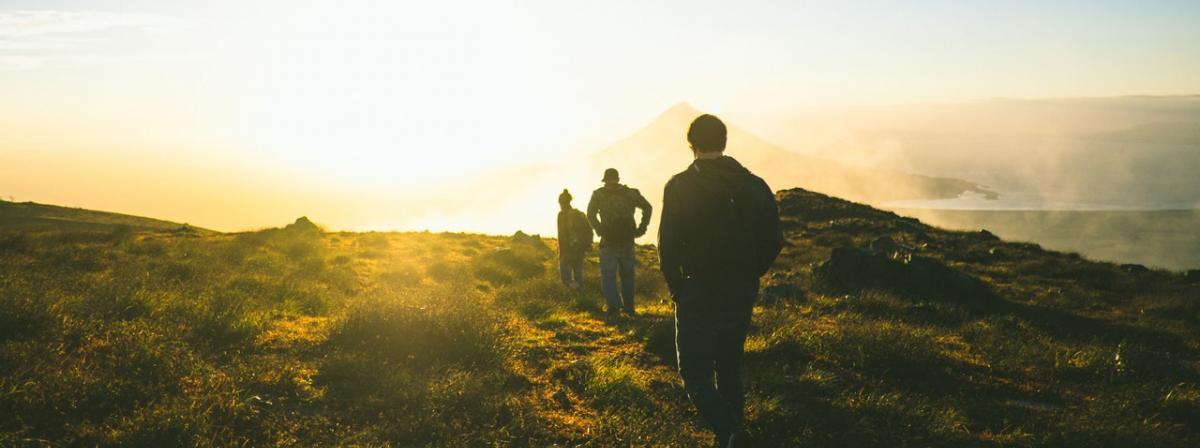 Walkingschuhe Ratgeber