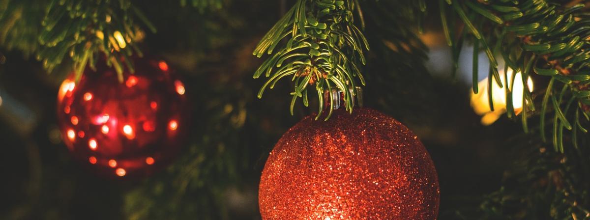 Weihnachtsbaum Vergleich