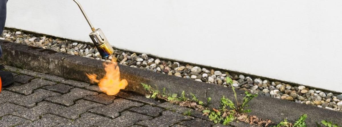 Abflammgerät Vergleich und Tipps