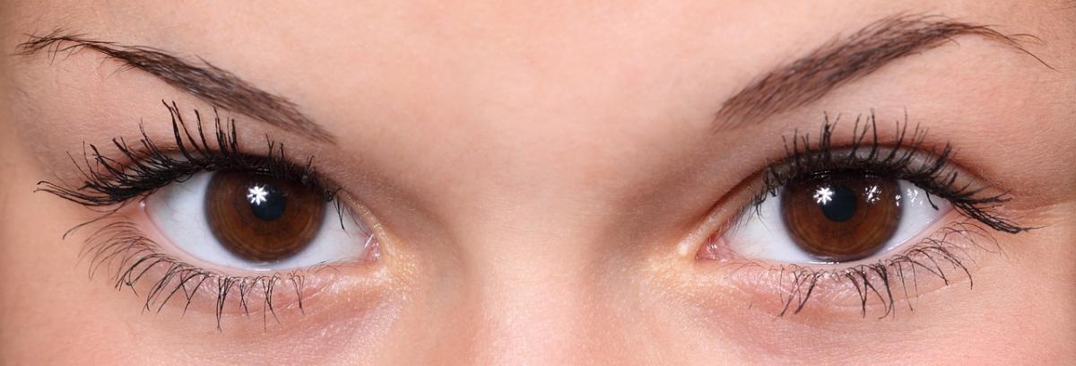 Augenbrauen Pinzette Vergleich und Tipps