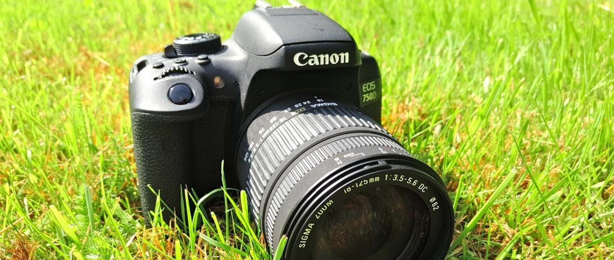 Canon EOS Digitalkamera Vergleich