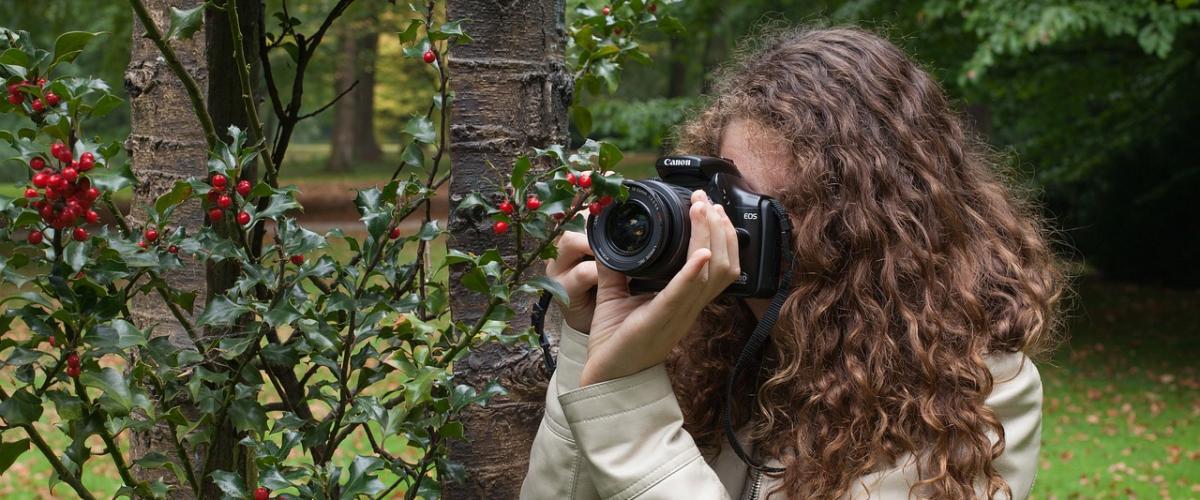 Digitalkamera mit optischem Sucher Vergleich