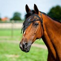 Fliegenschutz für Pferde Bestseller