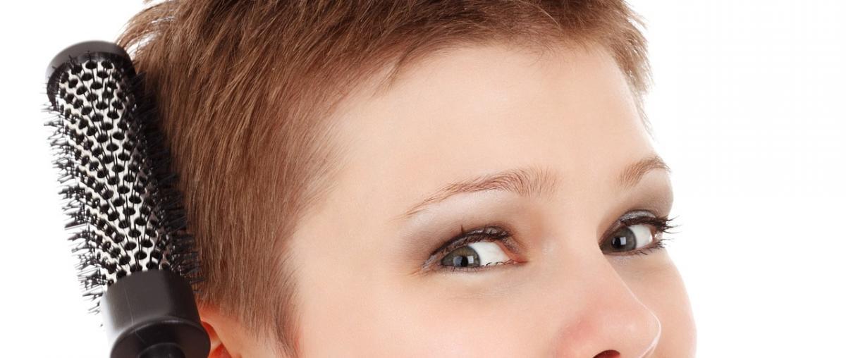 Haarbrüste Vergleich