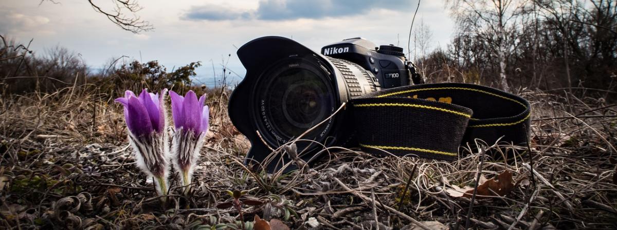 Nikon Kompaktkamera Vergleich