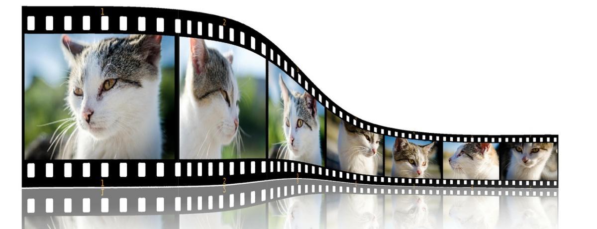 Video-Funkübertragung Vergleich