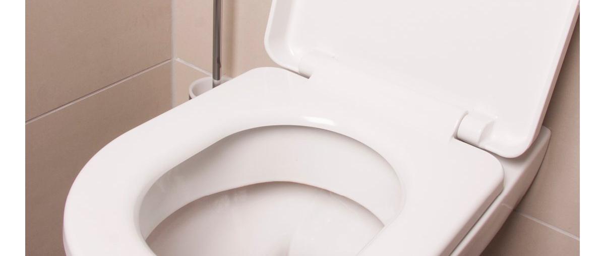 WC-Schüssel Ratgeber