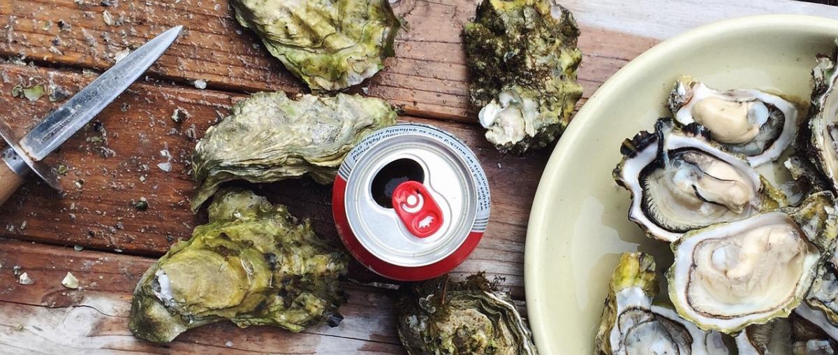 Austernmesser Tipps und Vergleich