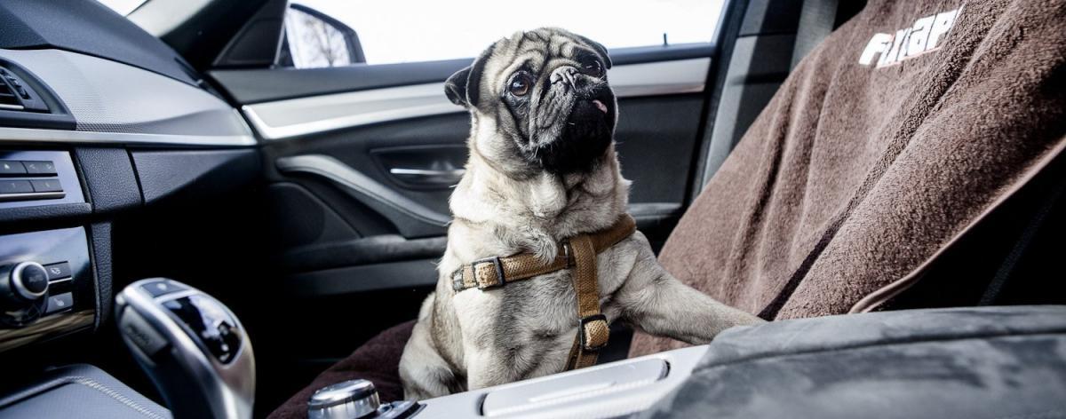 Autositzbezug Tuning Tipps