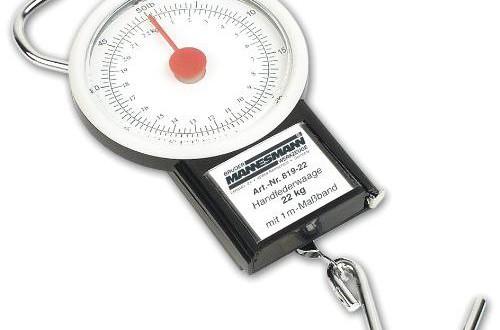 BIlinli Newton Force Meter Federwaage 5N 500g Doppelskalen-Waagenpr/üfstand