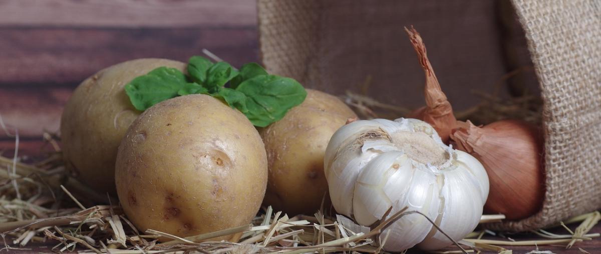 Kartoffeleimer Vergleich