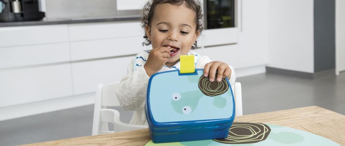Kinder Brotdose Ratgeber