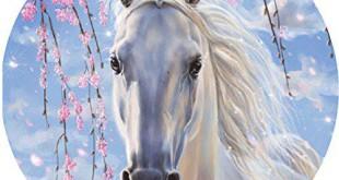 Pferd Tortenaufleger Bestseller