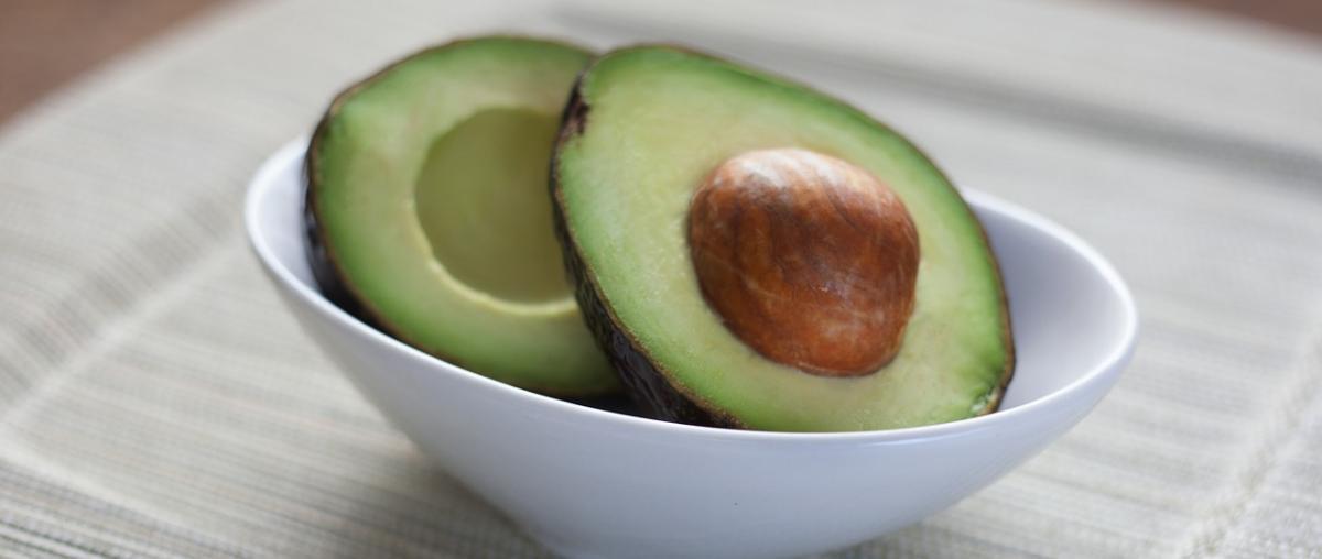 Avocadoöl Vergleich