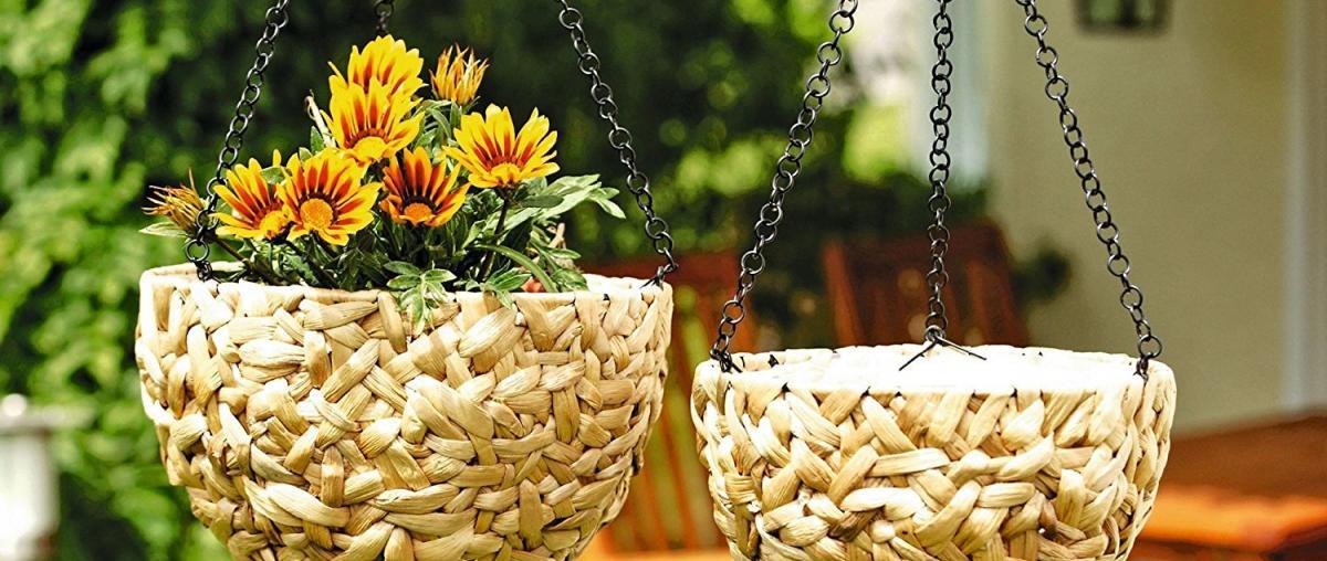 Blumenampel Ratgeber