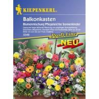 Blumensamen Bestseller