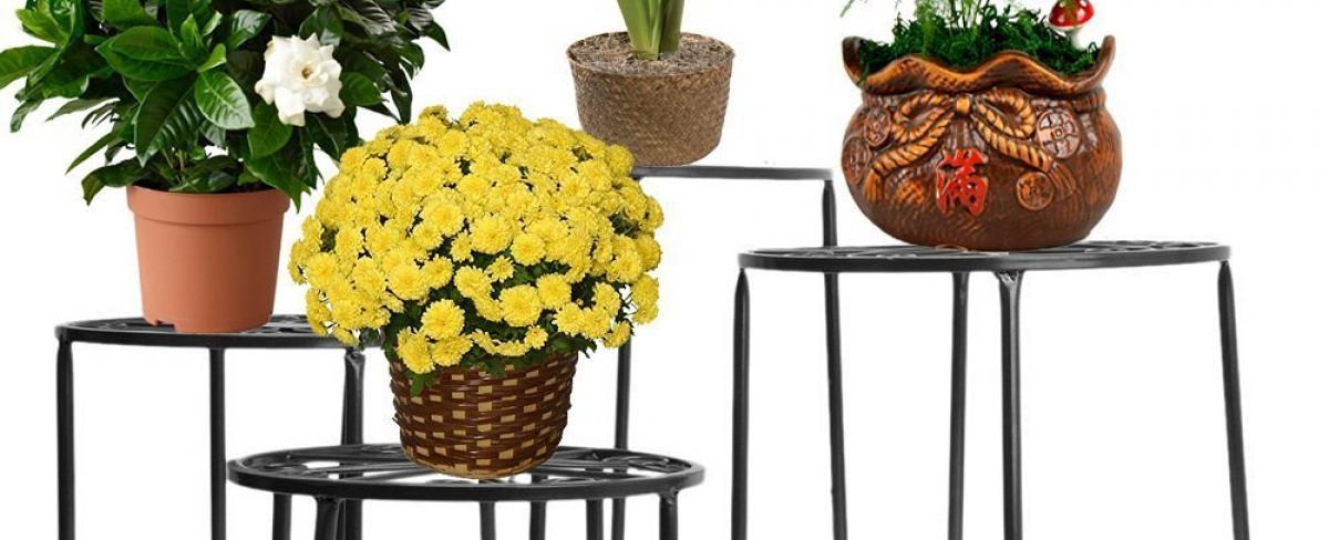 Blumenständer Ratgeber