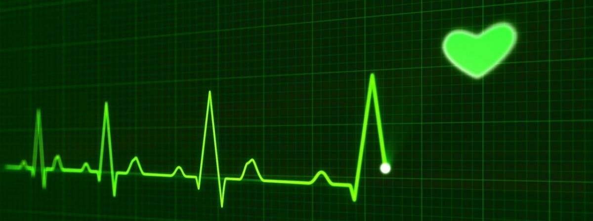 EKG-Gerät Vergleich