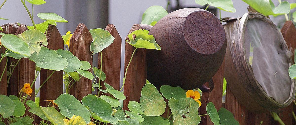 Gartensieb Ratgeber