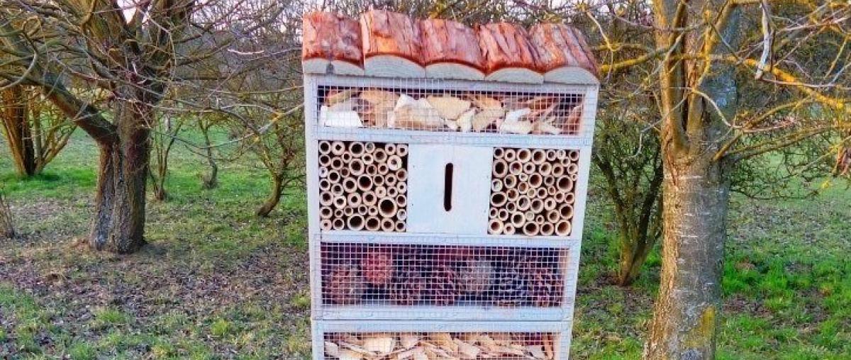 Insektenhotel Ratgeber