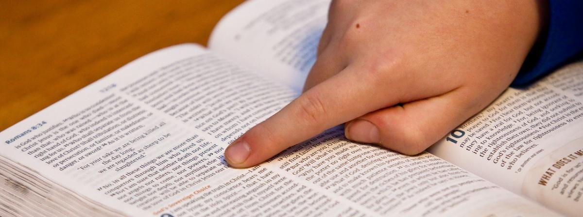 Kinderbibel Ratgeber
