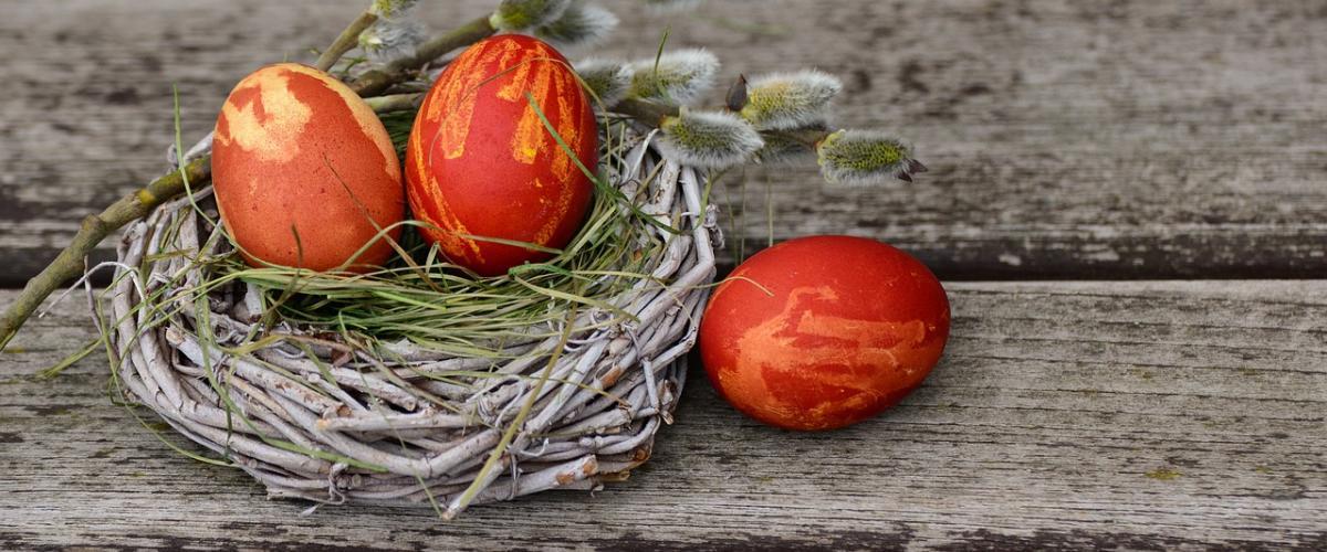 Ostern Geschirrtuch Vergleich