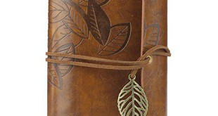 Tagebuch Bestseller