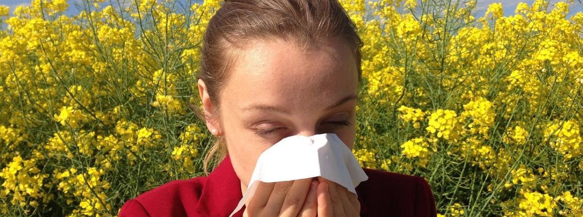 Allergie Tabletten Ratgeber