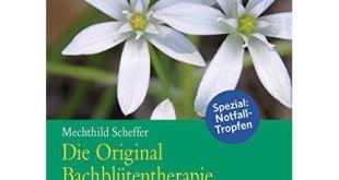 Bachblüten Bestseller