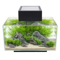 Fluval Aquarium Bestseller