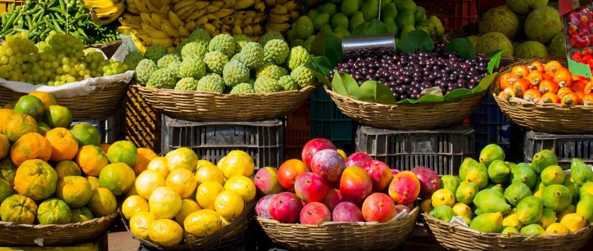 Fruchtextrakt Ratgeber