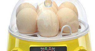 Geflügel Inkubator Bestseller