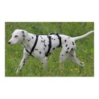 Hund Sicherheitsgeschirr Bestseller