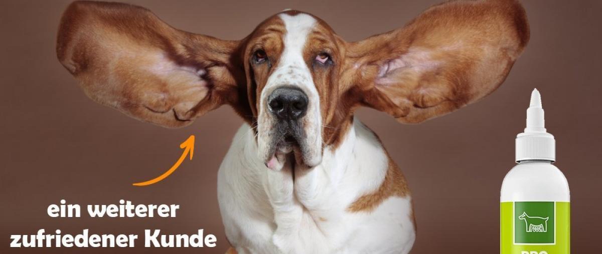Hunde Ohrenreiniger Vergleich