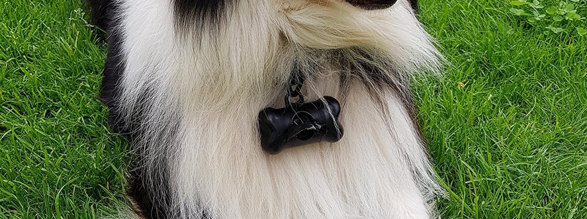 Hundekotbeutel Ratgeber