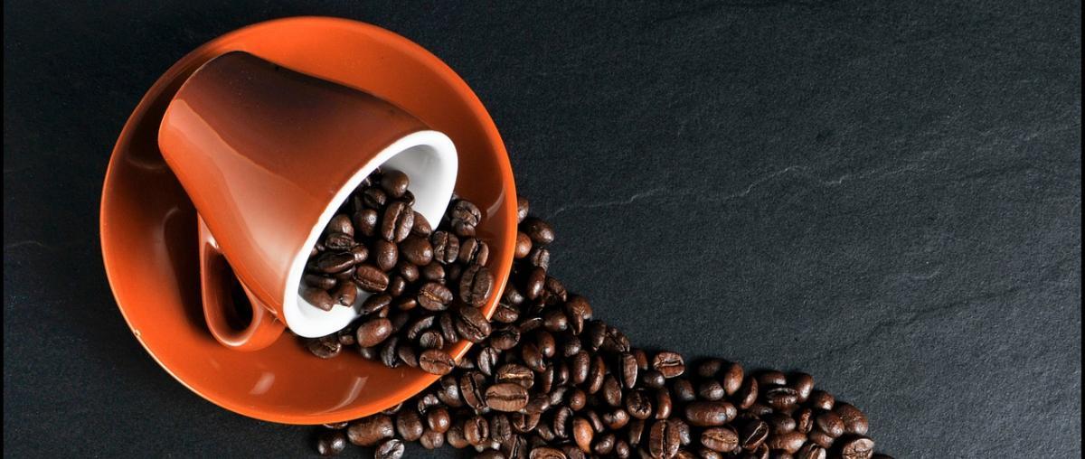 Kaffeeweißer Vergleich