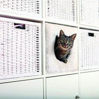 Katzenhöhle Bestseller