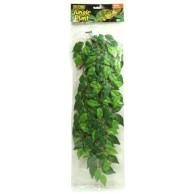 Terrarien Pflanze Bestseller