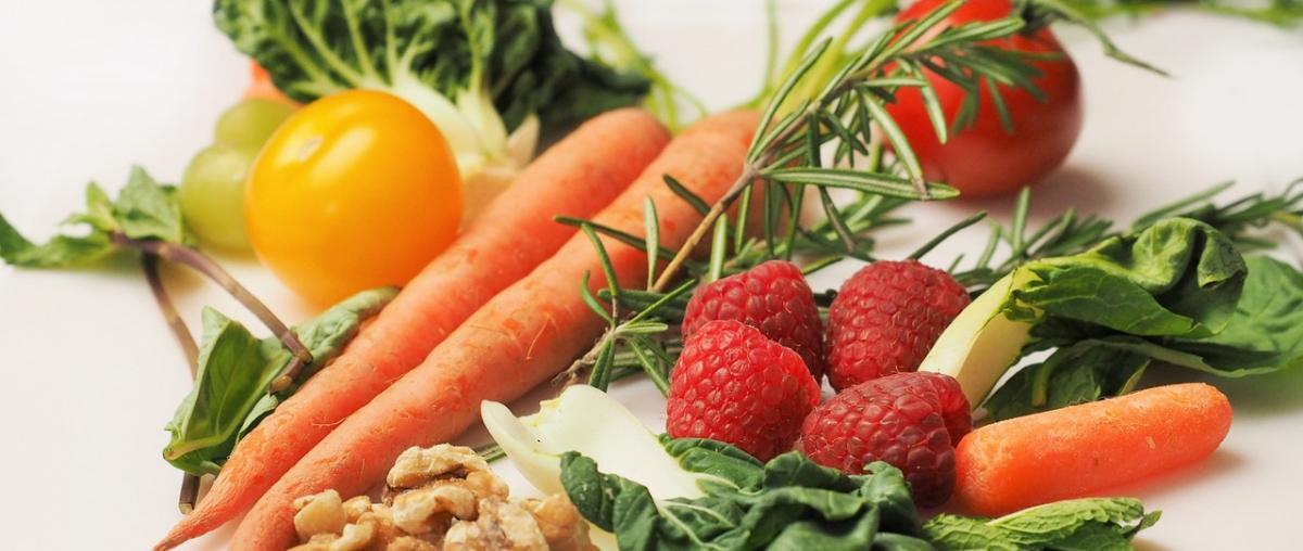 Vitamin A Ratgeber