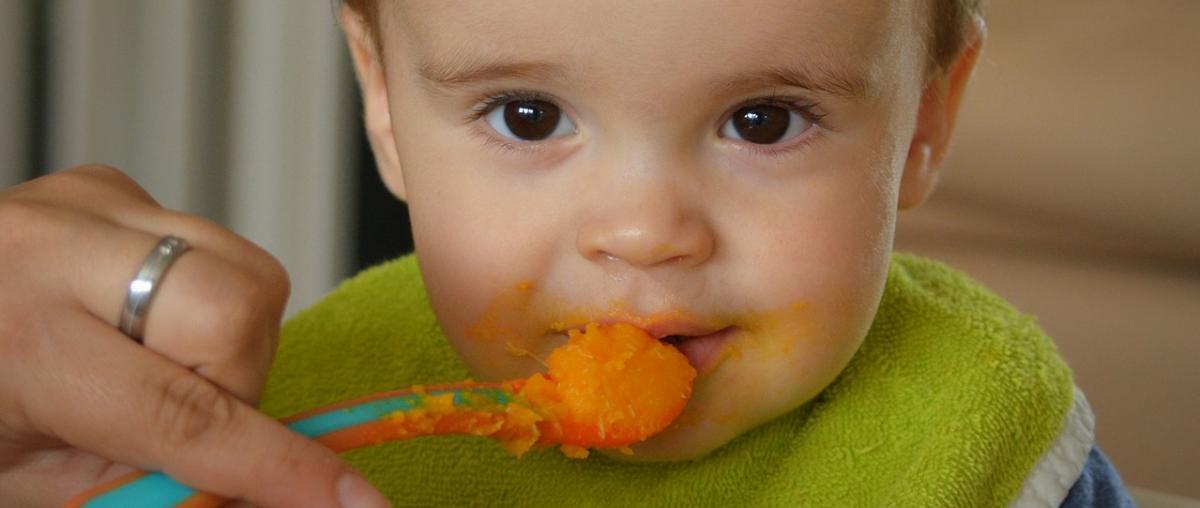 Baby Getreidebrei Vergleich